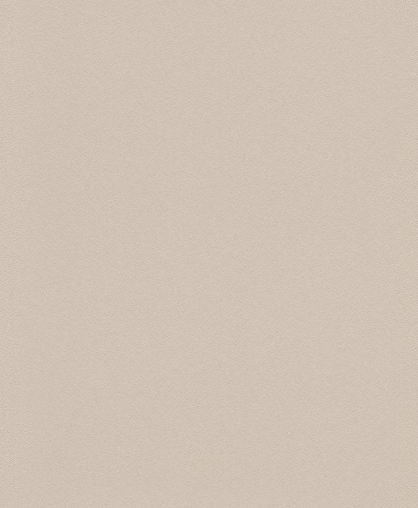 Виниловые обои Rasch Gipso 607796