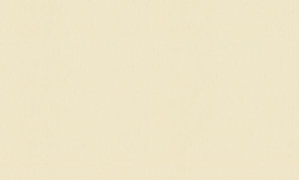 Виниловые обои Rasch Maximum XIV 954357
